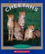 Animals - Set of 10 Books